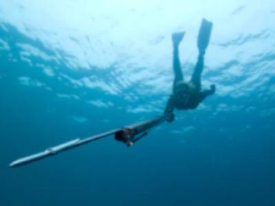 Top 10 Best Underwater Fishing Camera Reviews