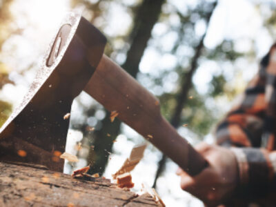10 Best Backpacking Axe Reviews