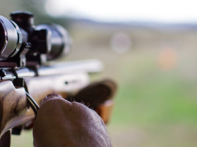 Bushnell Rifle Scope Review: The Reason Why Everyone Like it